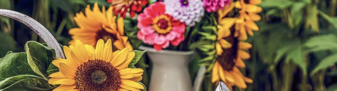 Bukiety na ogrodowy stół – kwiatowe dekoracje u schyłku lata