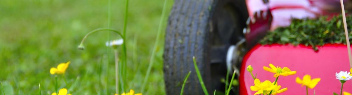 Kosiarka spalinowa do dużych trawników