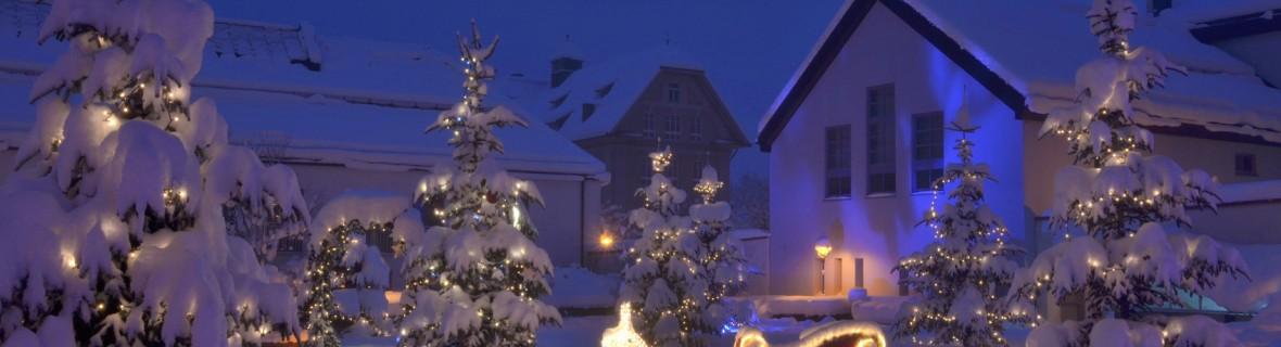 Lampki na drzewko w ogrodzie