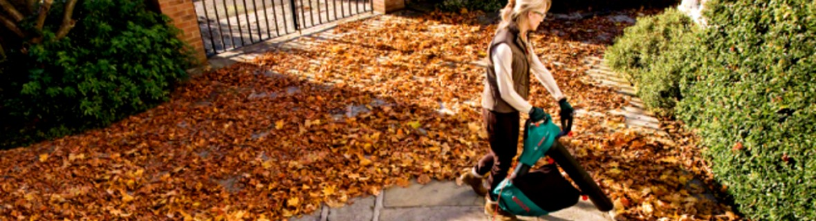 Odkurzacz ogrodowy – pomocny w usuwaniu liści