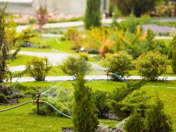 Skuteczne i wygodne podlewanie trawnika oraz rabat