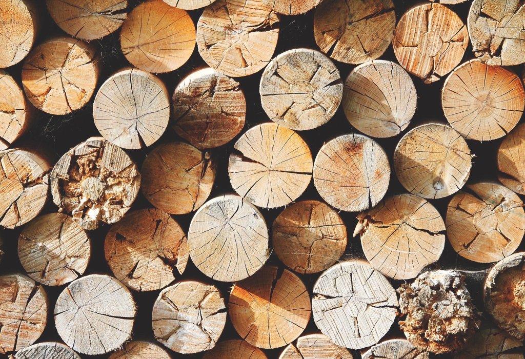 Jakie Drewno Do Kominka