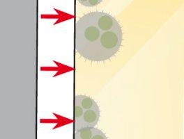 Światło dzienne aktywuje fotokatalizator w tynku lub w farbie