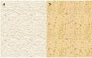 Najpopularniejsze faktury tynków cienkowarstwowych to baranek (a) oraz kornik (b). Głębokość wzoru zależy odwielkości ziaren kruszywa.