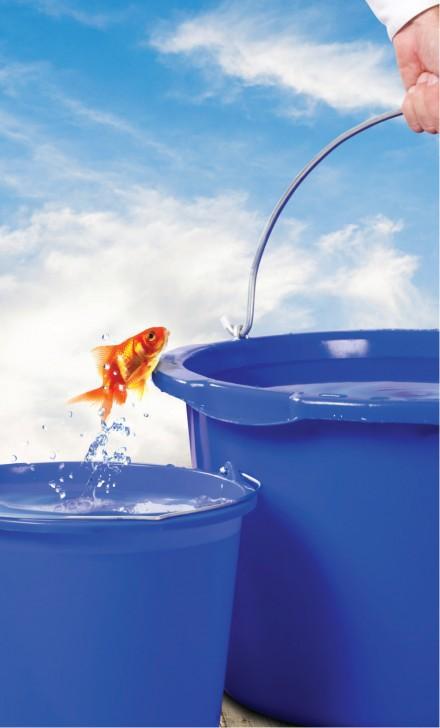 Zdj. 3. Nasze produkty są nie tylko ekologiczne, ale i lżejsze, bezpieczne oraz higieniczne.