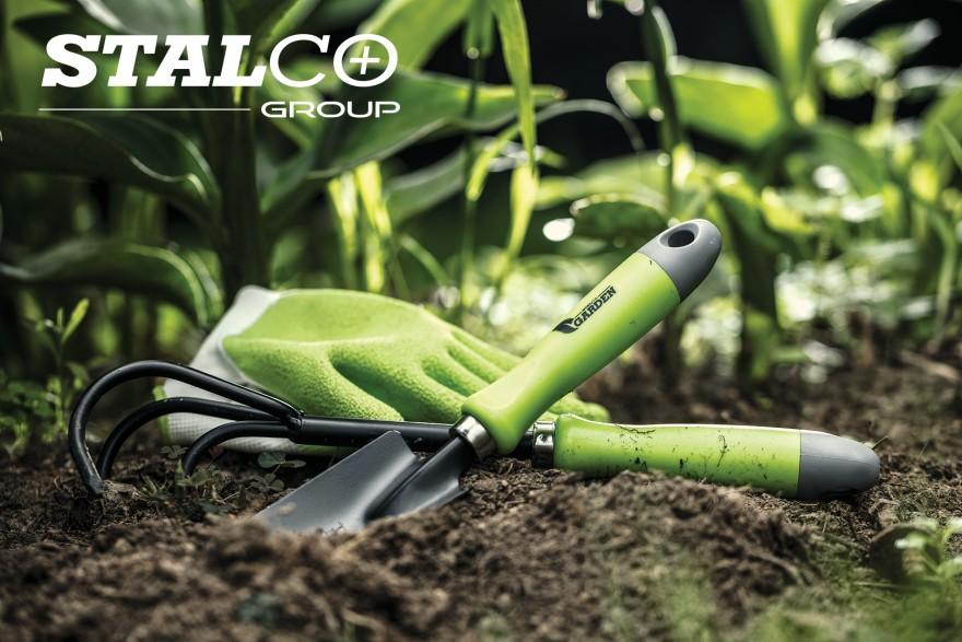Zdj. 3. Od marca możesz wycinać lub dzielić dotychczasowe rośliny, które dobrze się rozwinęły. Źródło: Archiwum STALCO.