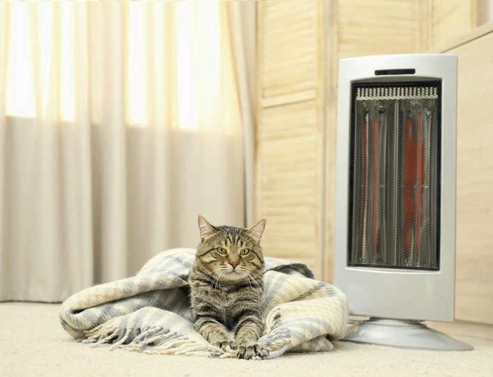Zdj 5. Regulacja temperatury