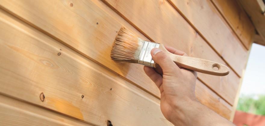 Zdj. 3. Powłoki na powierzchni drewna uniemożliwiają wnikniecie impregnatu, dlatego jeśli drewno pomalowane zostało zainfekowane i wymaga nałożenia impregnatu, należy usunąć wcześniej warstwy wykończeniowe. Źródło: Archiwum CLEMATIS.