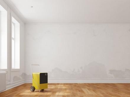 Zdj. 2. Jeśli domowe sposoby nie pomagają, Jeśli okażą się one niewystarczające, pomyśl o bardziej zaawansowanym narzędziu - osuszaczu powietrza.
