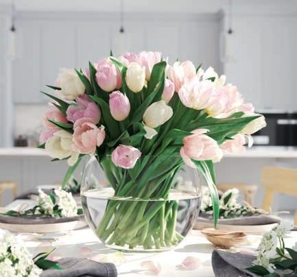 Zdj 11. Czas na tulipany