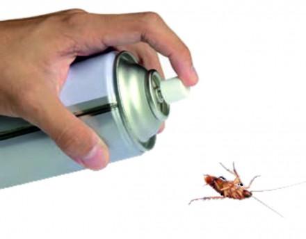 Specjalistyczne preparaty na insekty