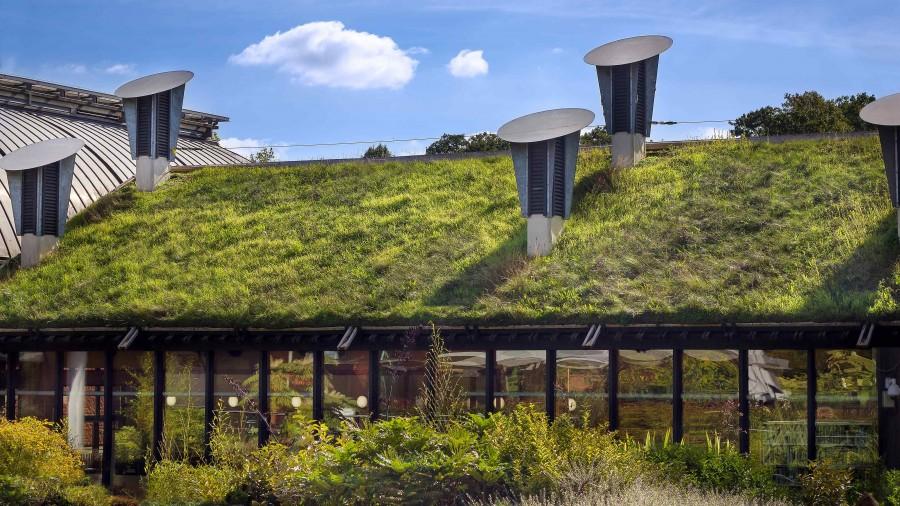 Do budowy domu ekologicznego wykorzystuje się materiały naturalne, ekologiczne, najczęściej pozyskiwane lokalnie