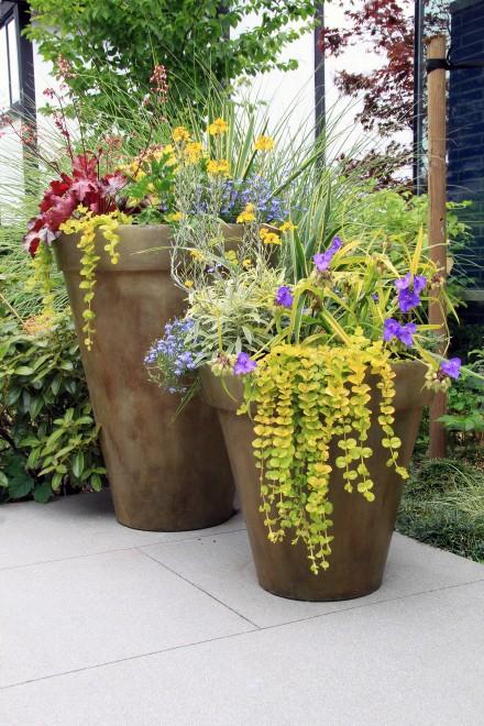 Zdj. 3. Donice betonowe to dobry sposób na podkreślenie urody roślin, szczególnie, gdy donice nie konkurują z roślinami formą, a są jedynie dla nich tłem.