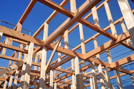 Drewno budowlane na domy szkieletowe