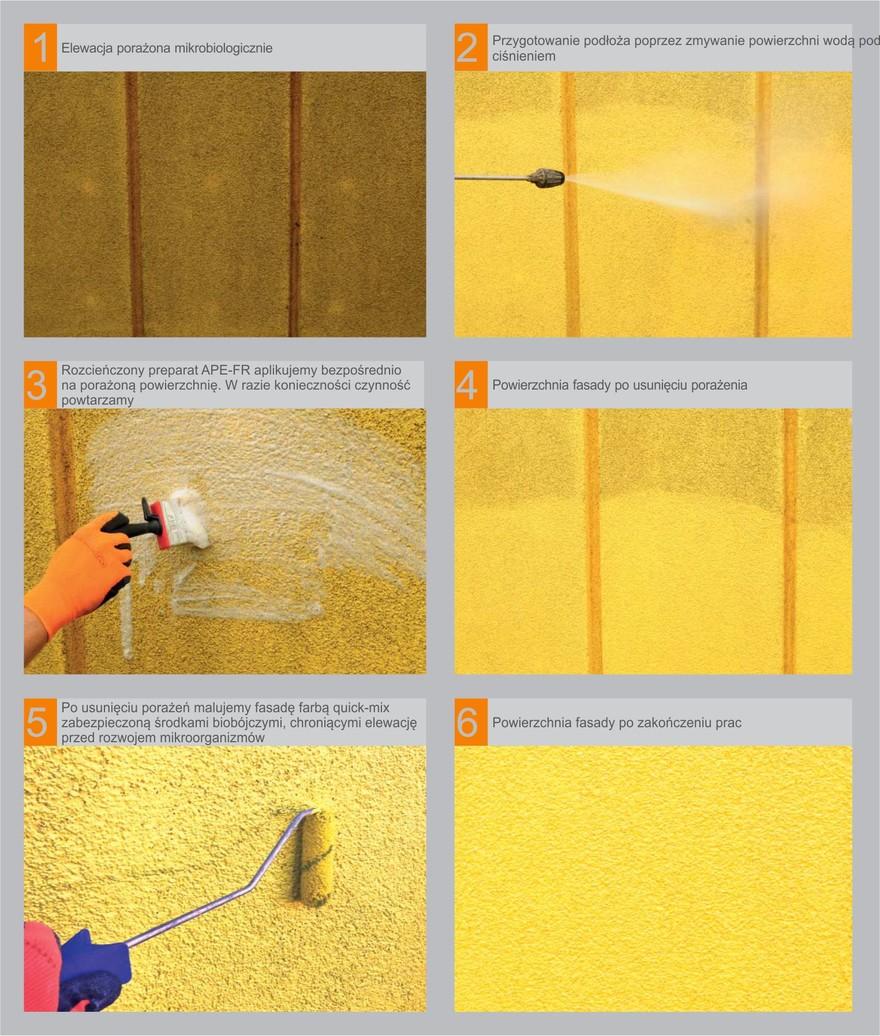 Renowacja elewacji porażonej przez glony i grzyby-pleśnie