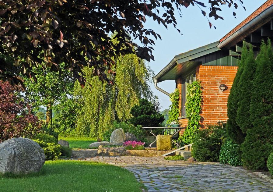 Rośliny posadzone w odpowiednich miejscach rzadziej chorują, bujniej rosną i kwitną (fot. pixabay.com)