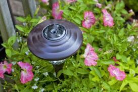 Oświetlenie rabat – jak doprowadzić instalację elektryczną w ogrodzie