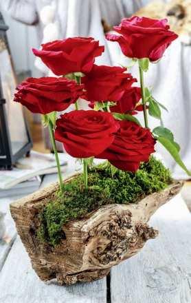 DIY: Zrób to sam: Różany miniogród
