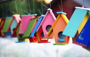 Ogród w kolorach lata – lakiery Color Spray marki Bostik