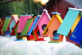 Ogród w kolorach lata – lakiery Color Spray marki Den Braven