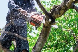 Narzędzia ogrodowe, czyli ergonomia w pracach ogrodowych
