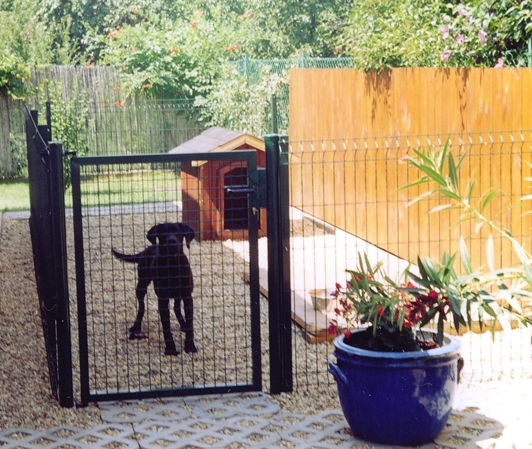 otocz-zwierzeta-w-ogrodzie-bezpieczna-siatka