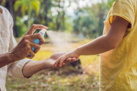5 sprawdzonych sposobów na komary w domu