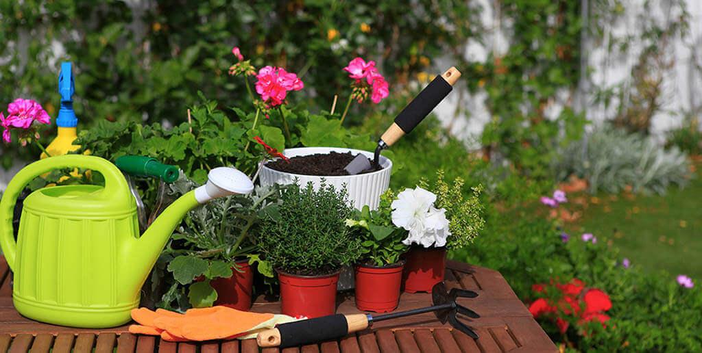 wiosenne-porzadki-w-ogrodzie-od-czego-zaczac