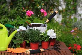 Wiosenne porządki w ogrodzie – od czego zacząć?