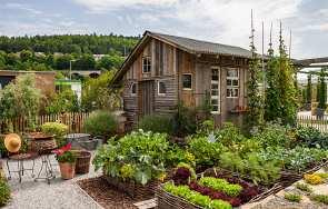 Domek na narzędzia ogrodowe. Czy to dobry pomysł?