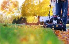 Jak przygotować ogród na pierwsze przymrozki?