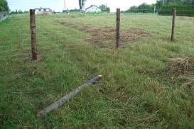Proste sposoby na najtańsze ogrodzenie działki