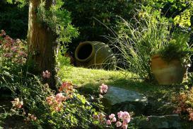Zakładanie ogrodu – rośliny na dobry początek