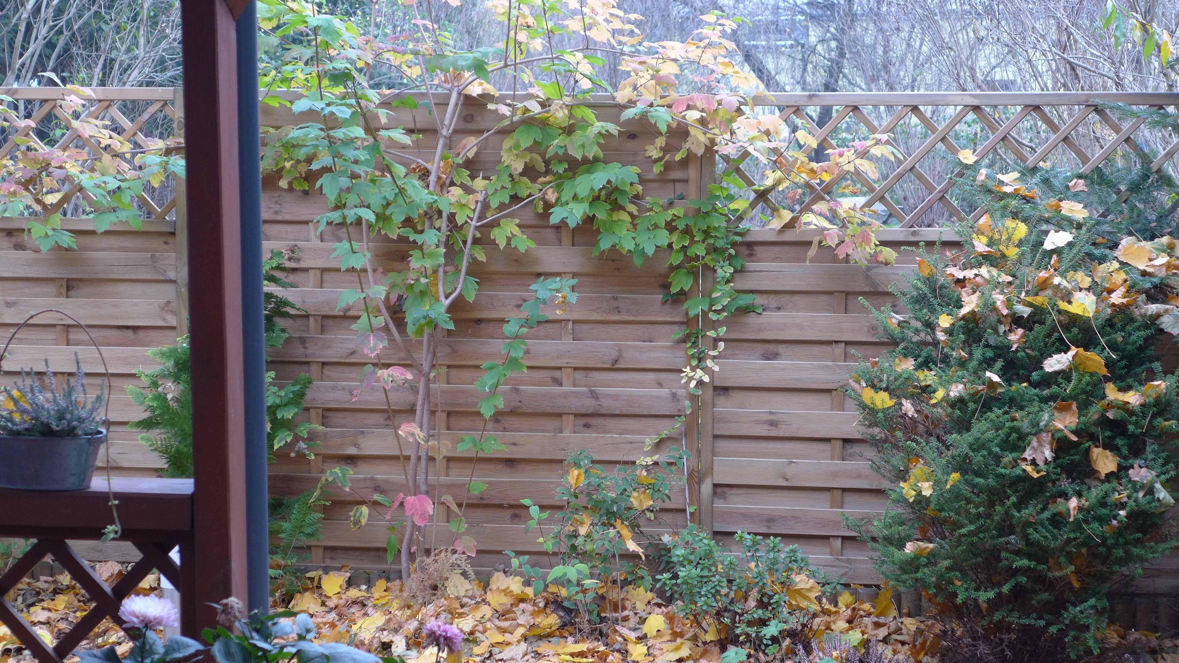 drewniane-ploty-panelowe