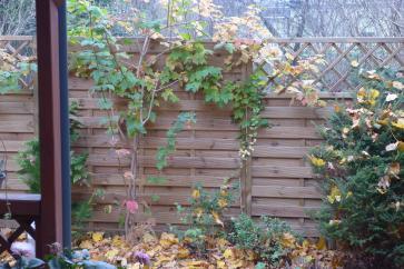 Drewniane płoty panelowe