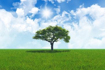 Wentylacja z odzyskiem ciepła - ekologiczny sposób na zdrowe i ciepłe powietrze