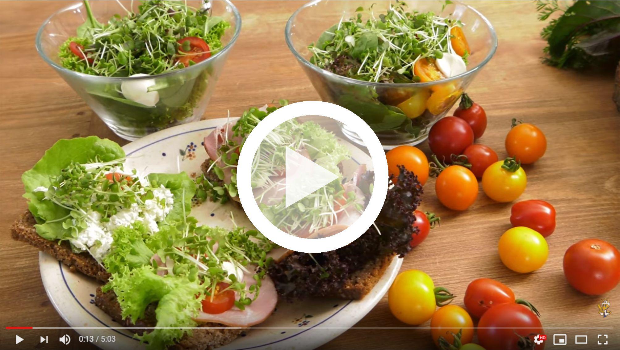 microgreens-uprawa-i-wykorzystanie
