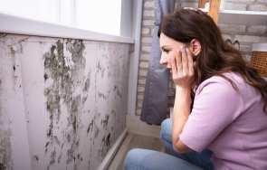 Wilgoć w domu – skuteczne sposoby na wilgoć w starym i nowym domu