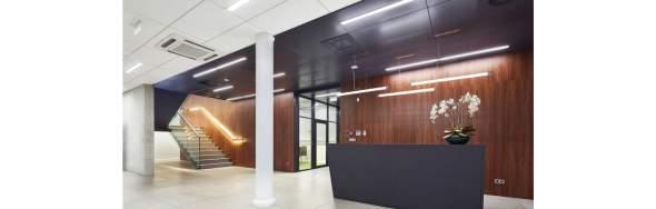 Artykuł: Rodzaje zawiesi – element bezpiecznego montażu sufitów podwieszanych