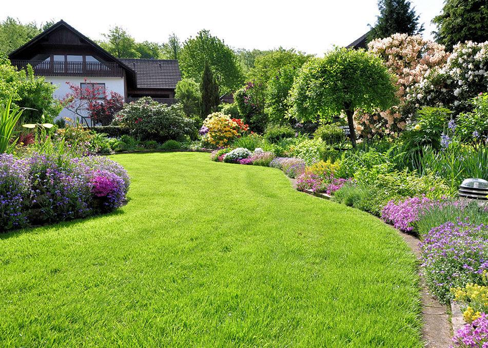 jak-zalozyc-i-dbac-o-trawnik-sianie-nawozenie-koszenie-wertykulacja-aeracja-trawnika