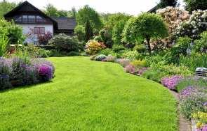 Jak założyć i  dbać o trawnik? Sianie, nawożenie, koszenie,  wertykulacja, aeracja trawnika.