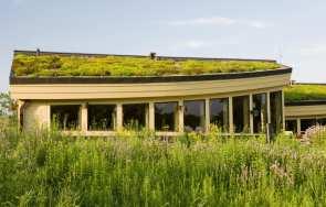 Artykuł: Bezpieczeństwo pożarowe dachów zielonych