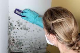 Usuwanie pleśni ze ścian i sufitów
