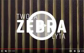 Poznaj nowość od GUTTA! Płyta komorowa z poliwęglanu Zebraplatte Master