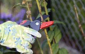 PROLINE - linia narzędzi do pielęgnacji ogrodu klasy PREMIUM