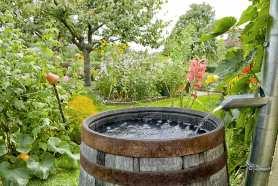 Jak podłączyć zbiornik na deszczówkę do rynny – zobacz sprawdzone sposoby