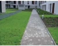 IZOBUD - Dachy zielone