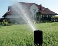 Jak odpowiednio nawadniać ogród?