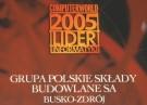 grupa-psb-zostala-liderem-informatyki-2005