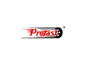 P.H. PROFAST MAJEK, STACHECKI, WOŚ SP.J.
